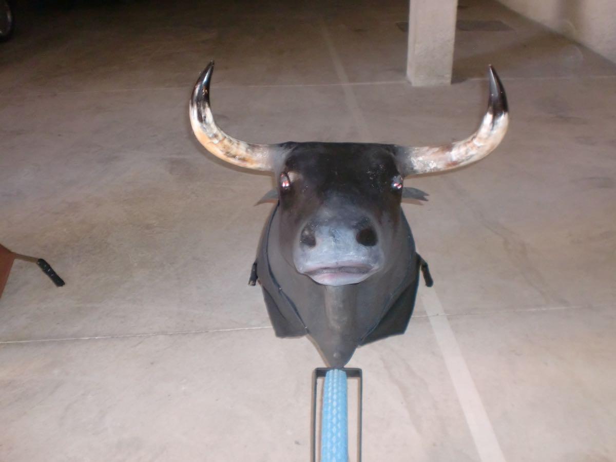 toros-de-rueda-y-fuego-06